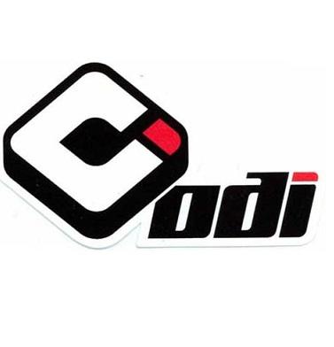 Guidon ODI